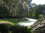 Avery Island Jungle Gardens - where the Tabasco comes from